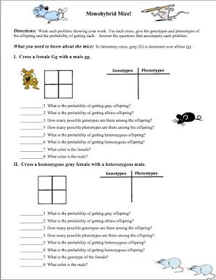 Need An Introductory Genetics Worksheet? - Classroom Freebies