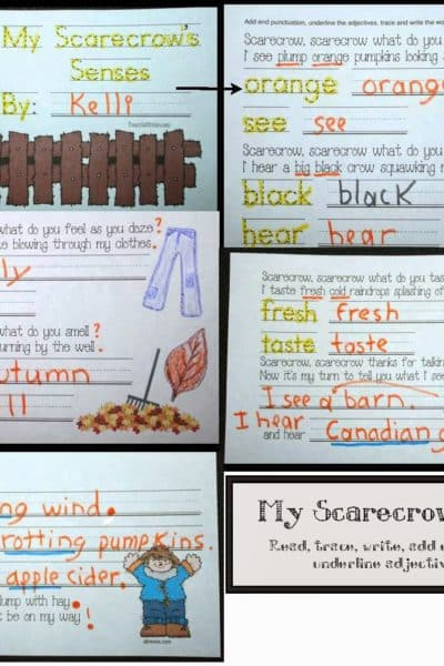 Common Core Scarecrows 5 Senses Packet