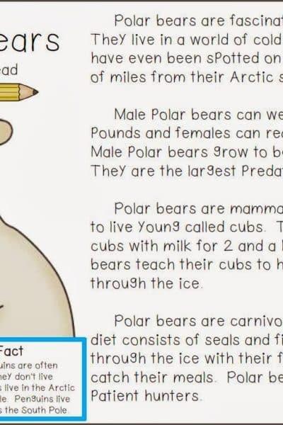 Polar Bear Close Read FREEBIE
