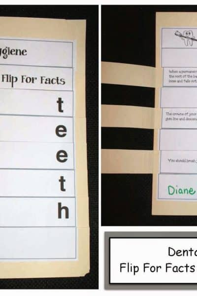 Dental Hygiene Flip For Facts File Folder Reports