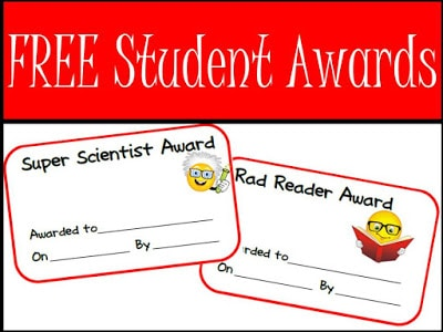 free silly student awards for your primary students from Raki's Rad Resources.