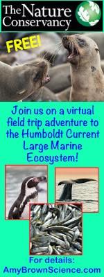Nature Works Everywhere Virtual Field Trip to Coastal Peru