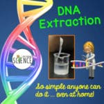 Simple DNA Extraction!