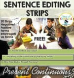Sea of Knowledge's (ESL World) Free Sentence Editing Strips