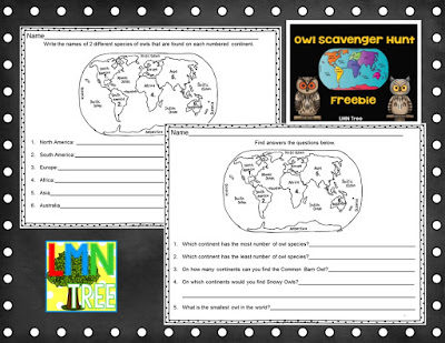 """Where in the World"" Owl Scavenger Hunt"