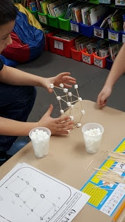 Toothpick and Marshmallow Challenge