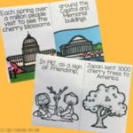 Cherry Blossom Life Cycle and Washington Cherry Blossom Festival Readers