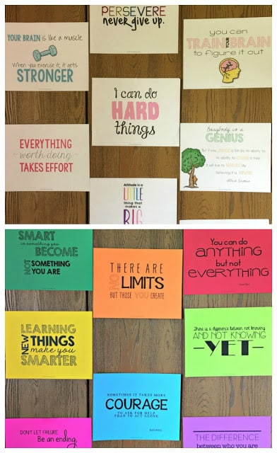 Help your students have a growth mindset in the classroom with these free motivating sample posters!  Check them out!