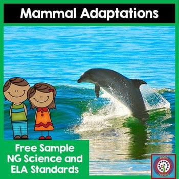 Mammal Adaptations Freebie!