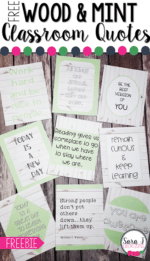 Wood and Mint Classroom Quotes