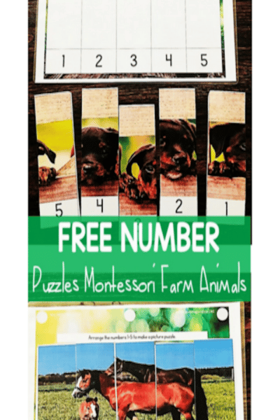 Sea of Knowledge's FREE Real-Life Farm Number Puzzles