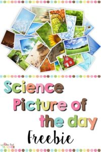 Help your students build their observation skills and inference skills with this science picture of the day freebie! This science freebie will engage them and help them see science in their lives around them!