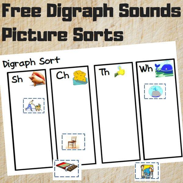 Free Digraph Picture Sorts