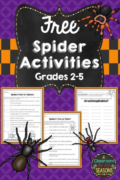 Spider Activities #classroomfreebies, #spiders, #halloweenlessons