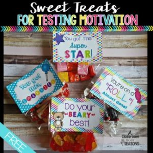 Candy Labels for Testing Motivation - Classroom Freebies