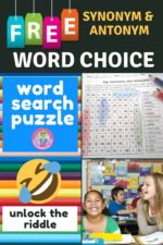Word Search Puzzle / Word Choice Worksheet