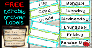 Free plastic drawer labels for classroom organization Terri's Teaching Treasures #free #organization #plasticdrawers
