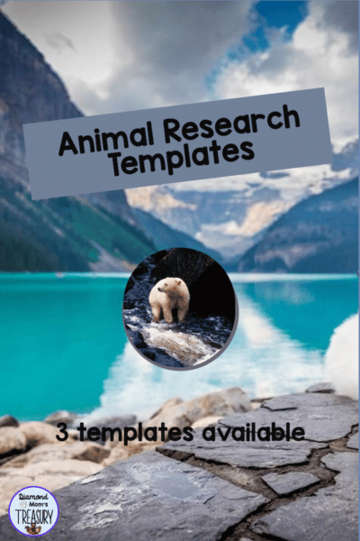 This is a set of 3 different graphic organizer templates for research and use in creating powerpoints or other presentations. #animalresearch #graphicorganizer #researchtemplates